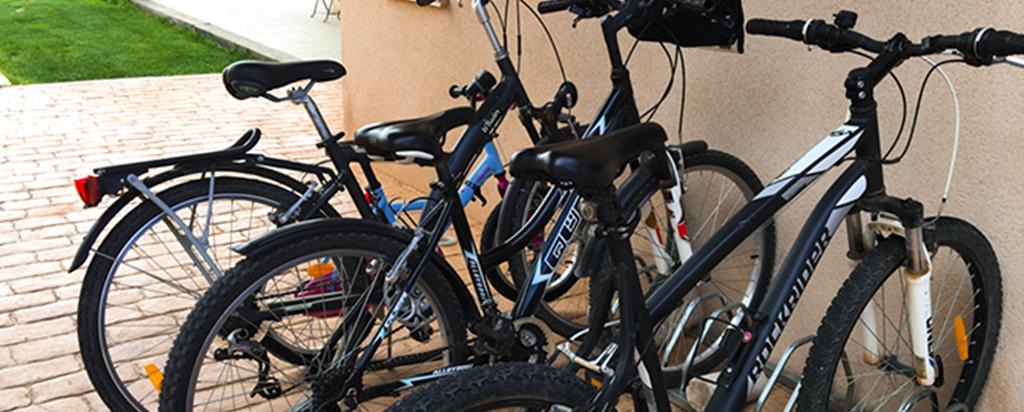 Paseo Bicicleta MonteHigueras