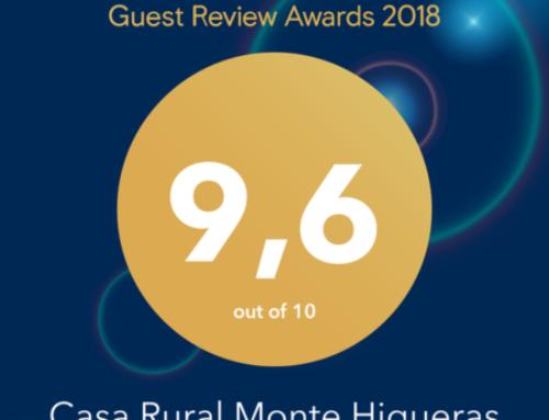 Winner Adward – Guest Review 2018